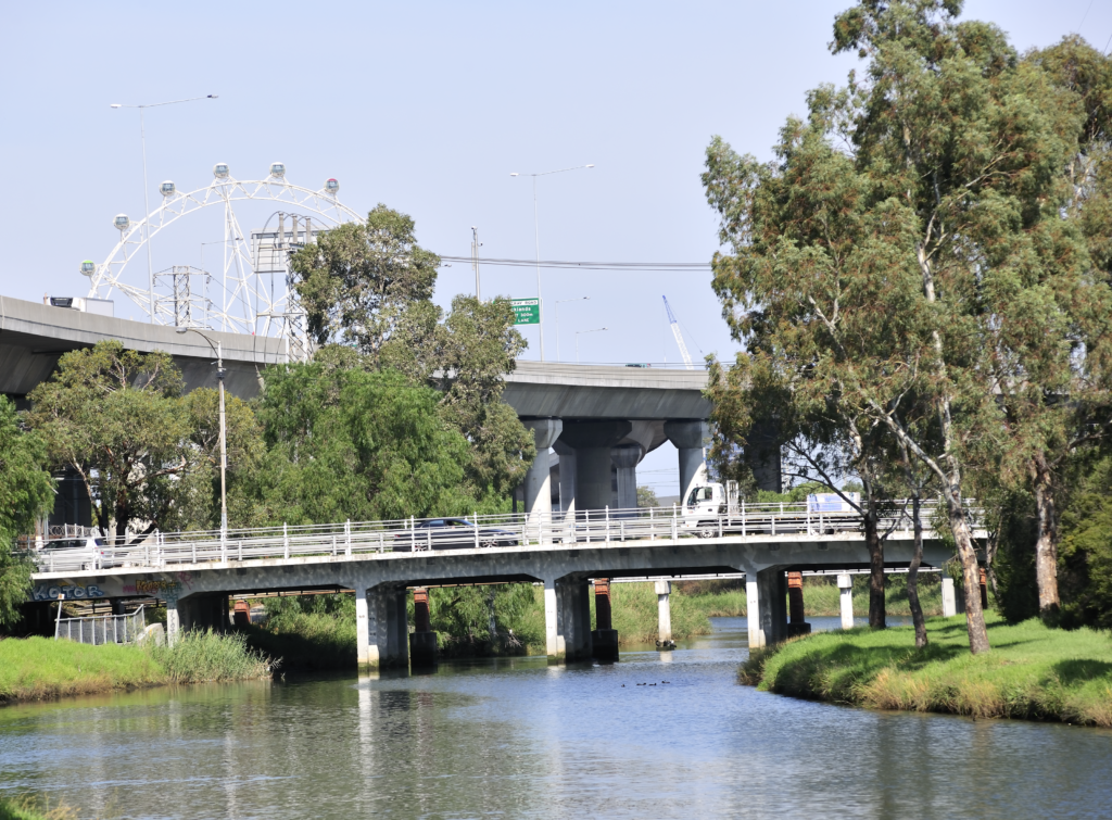 draft water sensitive urban design engineering guidelines