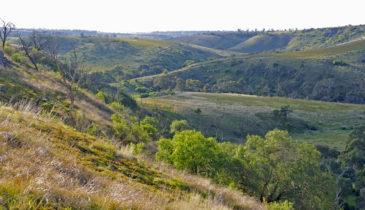 Sunbury Hills