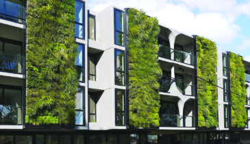 Green wall embedding sustainable change
