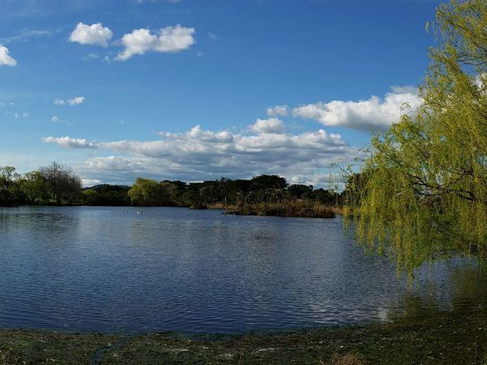 Landscape portrait of a water feature at Minta Farm